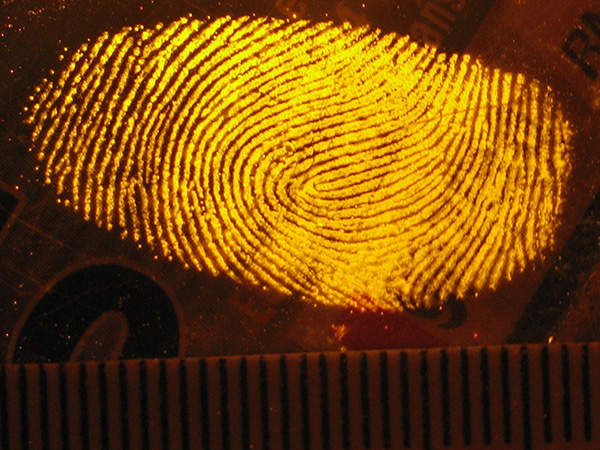 IDENT1 is the national automated fingerprint system of the UK. Image courtesy of JohnRambo PL.
